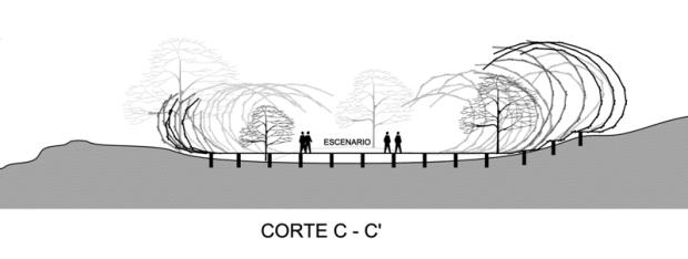 CORTE C-C'