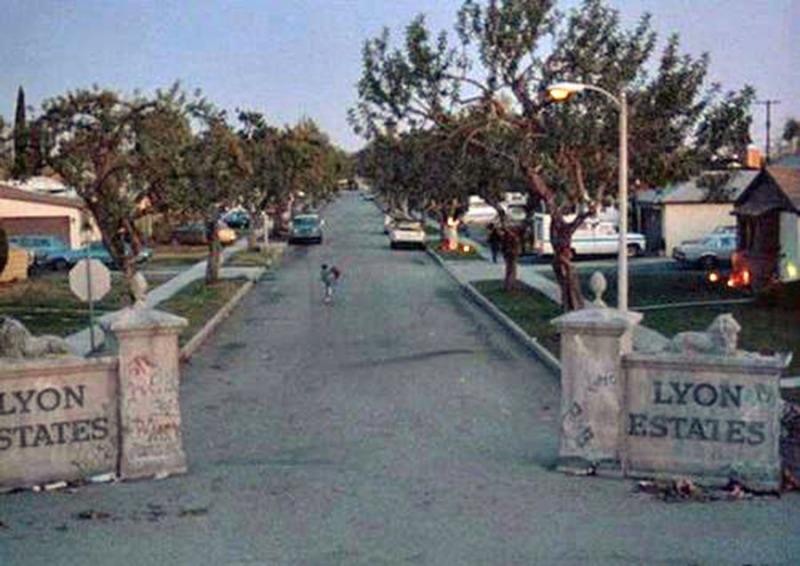 1985-lions-estate